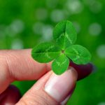 four leaves of the clover represent SS7, Diameter, GTP, and SIP
